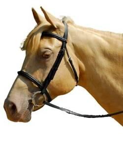 Windsor Cavesson Snaffle BRIDLE + Reins | Shetland Pony Cob - Black Havana