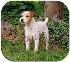 Jack Russell Terrier Brown White Rough Cut Dog Computer MOUSE PAD Mousepad