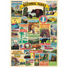 1000 Piece Jigsaw Puzzle National Park For Adults Kids Learning Educational Game