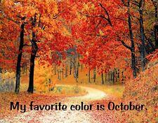 Metal Fridge Magnet My Favorite Color Is October Four Seasons Fall Autumn