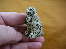 (Y-Dog-Cs-703) Cocker Spaniel white black dog Spotted gemstone gem stone carving