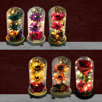 Mothers Day Gifts LED light Flowers Rose Mum Mom Mummy Birthday Present Ornament