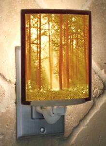 "Lithophane Night Light Handmade Curved Panel Porcelain Garden Colored 5""H New"