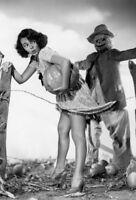 Vintage Scarecrow Photo 503 Oddleys Strange & Bizarre