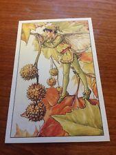 Cicely Mary Barker Flower Fairy Postcard - Plane Tree Fairy - NEW