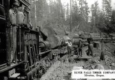 OR BW PHOTO Silverton Oregon Silver Falls Timber Co RR