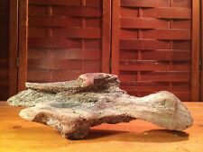 "Beautiful 13"" Driftwood Piece Terrarium Reptile Taxidermy Aquarium Wood Decor"