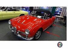 SCHWELLERLEISTE LEISTE ALFA ROMEO 101 GIULIETTA 1300 GIULIA 1600 SPIDER 59-64