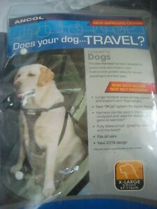 Car harness for x-large dog