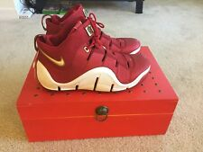 "NIKE Zoom LeBron IV ""China"" LIMITED EDITION SZ 13 Pre-owned RARE release"