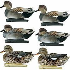 "Avian-X Top Flight Gadwall Gray Duck Decoys 6 Pack Sports "" Outdoors Accessories"