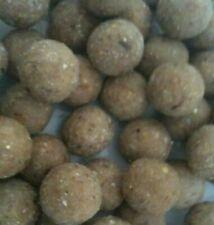 5kg 14mm Fenos Special Clink Boilies  Shelf Life