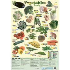 Educational Poster 5 a day Vegetables (0016)