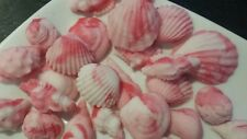 24 x Edible sugarpaste shells  in pink ideal pirate treasure chest themed cakes