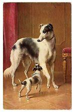 Postcard Dogs Borzoi & Terrier Reichert T.S.N. 1665