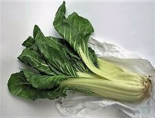 300 LUCULLUS SWISS CHARD Beta Vulgaris White Perpetual Spinach Vegetable Seeds