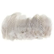 100 White Pheasant Natural Feather in Bulk for Craft Party Decoration 5-10cm