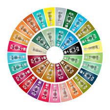 10 x Rainbow Dust choisis Progel couleur Pate Glacage Design gateaux Sugarcraft