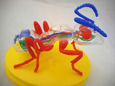 wood ant child friendly model kit toy boxed with stand, display dome & booklet