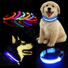 More details for light up led dog collar adjustable usb rechargeable pet safety luminous all size