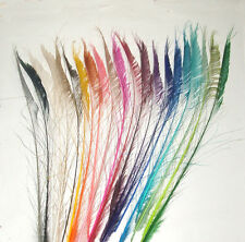 """10 Peacock Sword Feathers 30-38"""" Length Bleached & dyed 21 Colors Available"""
