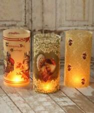 Vintage Thanksgiving Luminaries by Bethany Lowe Designs, Set of 3