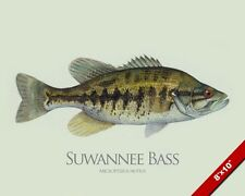 SUWANNEE BASS FISH PAINTING AMERICAN FRESHWATER FISHING ART REAL CANVAS PRINT