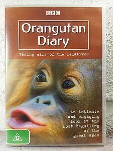 Orangutan Diary DVD - Taking Care Of The Relatives - BBC_MONKEY