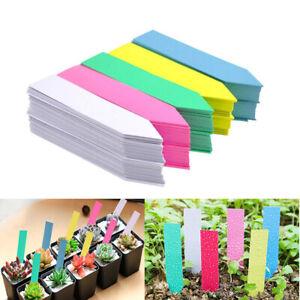 100Pcs Reusable Plants Labels Waterproof Nursery Garden Plant Plastic Tags