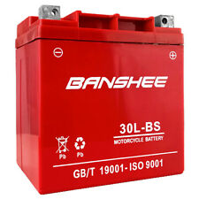 Banshee YTX30L-BS YIX30L-BS AGM Battery ForPowersports Atv/Utv & Harley Davidson