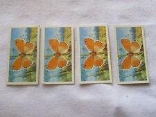 British Butterflies Card - Brooke Bond Tea - No.9 (1963)