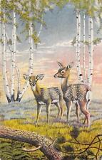 COWBOY WESTERN DEER FOREST ARTIST SIGNED DOT LARSEN POSTCARD 1947