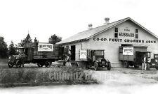 1926 Hubbard OREGON PHOTO Co-Op Fruit Growers, Weaver