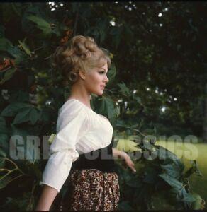 SUSAN DENBERG FRANKENSTEIN WOMAN HAMMER FILM '67 2 1/4 CAMERA TRANSPARENCY BASCH