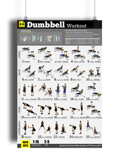 """Dumbbell Workout Poster Strength Training Personal Trainer Gym/Home 18""""X24"""""""