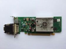 Schede video e grafiche DDR2 SDRAM per prodotti informatici DVI output , Capacità 256MB