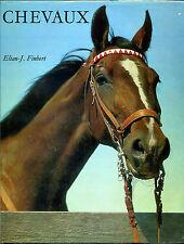 Chevaux  -  Elian-J.Finbert