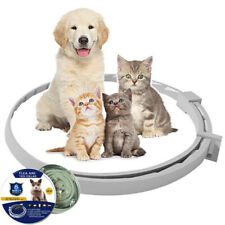 Small Dog Cat Flea and Tick Prevention Collar 8 Month Protection 38cm Waterproof