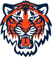 "Detroit Tigers MLB Vinyl Decal - You Choose Size 2""-28"""