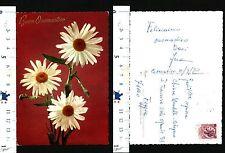 CARTOLINA TEMATICA FLOREALE - TRE BELISSIME MARGHERITE IN PRIMO PIANO - 54019