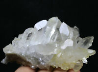 Natural Clear Quartz Crystal Cluster Wand Point Healing Mineral Specimen  305g