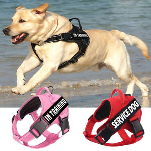 Emotional Support Dog Harness With 2 Patches No-Pull Training Service Pet Vest