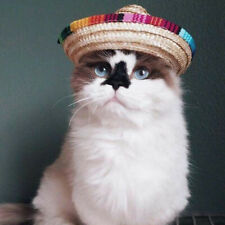 1pc Pet Cat Puppy Dog Holiday Straw Hat Buckle Costume Sombrero For Small Animal