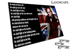 Winston Churchill We shall never surrender quote Art Poster Print - X1543