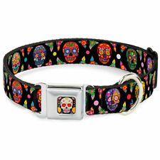 Buckle-Down Seatbelt Buckle Dog Collar # LARGE