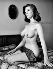 A947 8x10 BUSTY 1950s-1960s Nude * BIG BEAUTIFUL BREASTS by HARRY AMDUR! (NUDES)