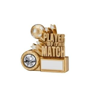 6 x 90mm 'Player of the Match' awards (RRP £3.99 each) engraved and postage free
