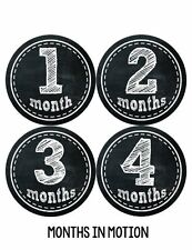 Months in Motion 155 Monthly Baby Stickers Baby Boy or Baby Girl Chalkboard, New