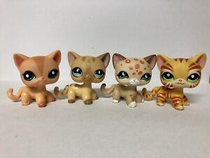 Littlest Pet Shop Shorthair Cats
