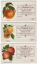 RARE Advertising 7 Trade Cards - Peirson Maple Grove Nursery Waterloo NY ca 1890